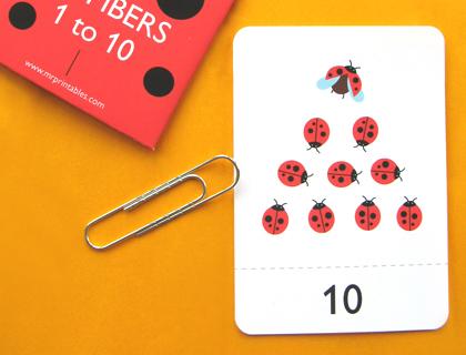 Number Flash Cards by Mr Printables